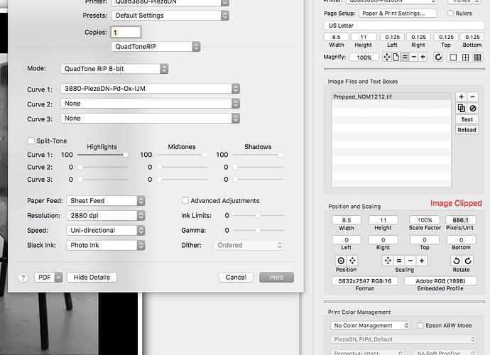 Print-tool-settings.png