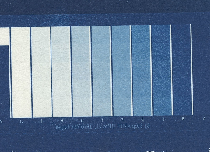 cyanotype-results.jpg