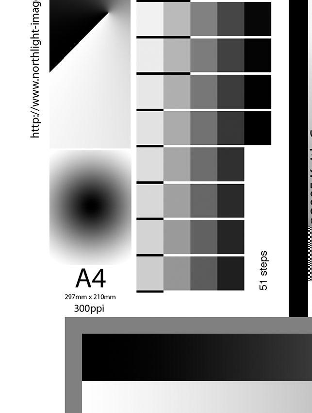 test-image.jpg