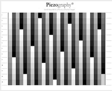 Piezography-21x16step-i1Pro2
